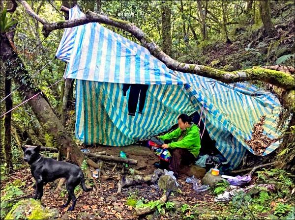邱姓男子跟愛犬「蜜雪兒」在新竹縣尖石鄉山區受困,1人1犬就靠1包花生撐7天獲救。(圖由新竹縣政府提供)