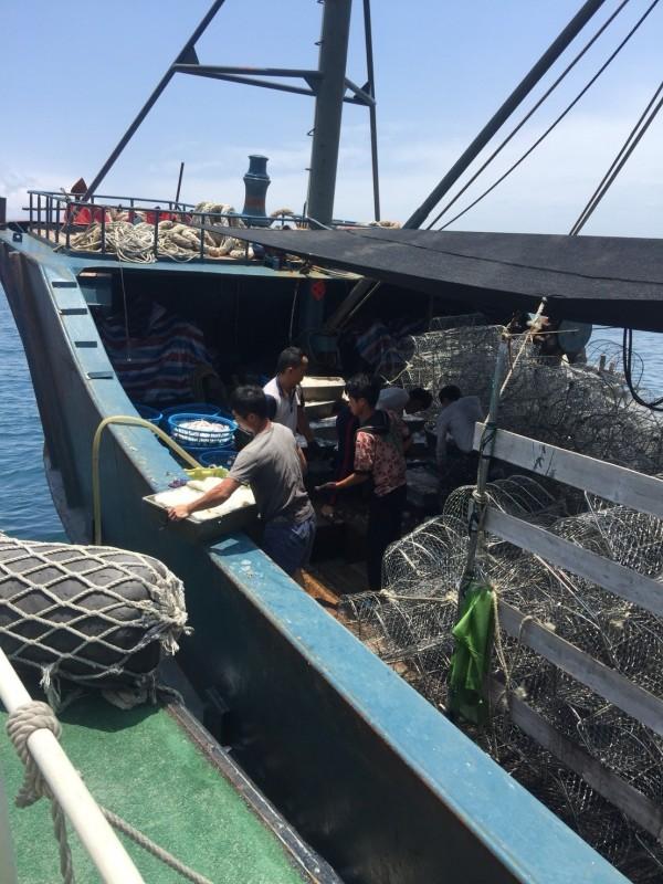 越界中國漁船非法漁獲,在外海強制海拋。(澎湖海巡隊提供)