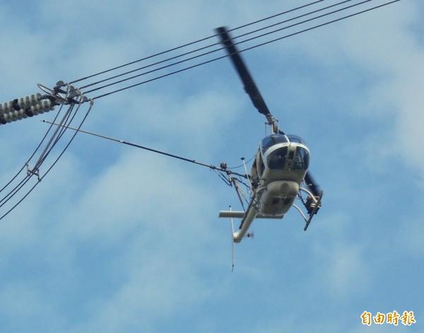 民眾建議政府用空中噴藥防治椿象。(資料照,記者顏宏駿攝)