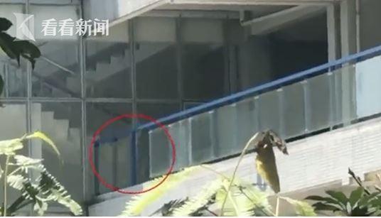 中國一間技術學院傳出玻璃掉落意外,砸死一名女大生。(圖擷自看看新聞)