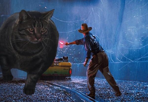 網友創意地將這隻體型是一般貓咪兩倍大的「肌肉貓」,P圖進電影《侏儸紀公園》的經典畫面。(圖擷取自推特)
