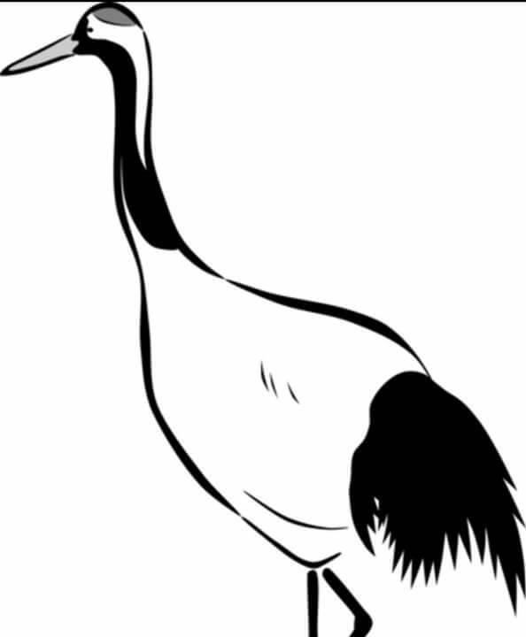 陳明宗提供鶴鳥國畫印證,與鳥嶼空照圖相似度十足。(陳明宗提供)
