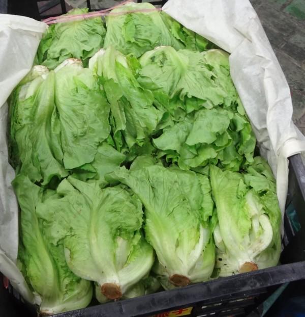 環南市場販售的大陸妹遭檢出殘留農藥超標。(台北市衛生局提供)