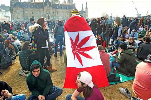今年四月二十日,加拿大民眾在渥太華國會山莊舉行集會,其中有人披上把楓葉改成大麻葉的加國國旗。(法新社)