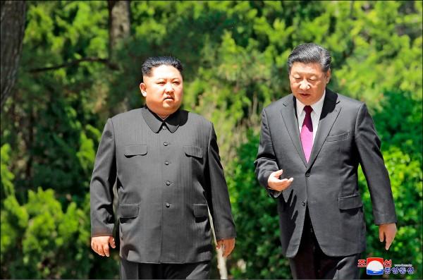 金正恩(左)掌權以來,即與北京當局保持距離,卻接連於今年三月和五月訪中,拜會中國國家主席習近平(右)。圖為五月八日在大連的第二次「習金會」。(美聯社檔案照)