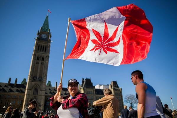 支持大麻合法化的加拿大民眾,2016年4月在渥太華國會山莊前揮舞一面印有大麻葉的旗幟。(法新社)