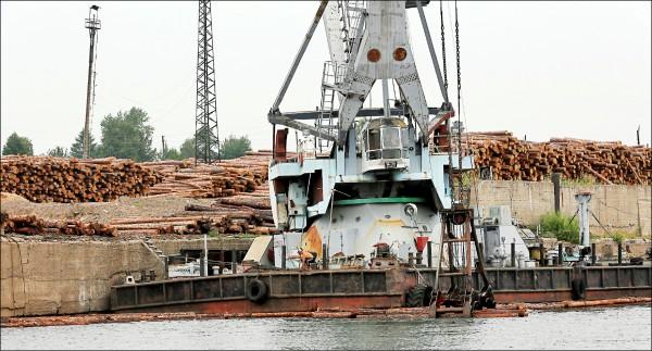 二○一六年七月,新葉尼塞林業集團在西伯利亞克拉斯諾亞斯克邊疆區葉尼塞河畔的木材加工設施,處理從上游砍伐、運送下來的高品質西伯利亞安加拉松木。(路透檔案照)