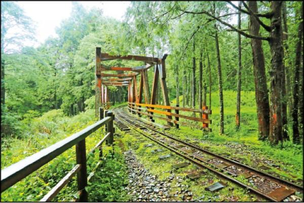 以舊有橋樑改建而成的仿古木棧橋,是必拍景點之一。(記者李惠洲/攝影)