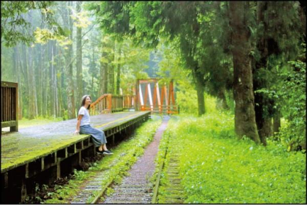 簡易的「水山站」月台搭著林蔭與鐵軌同框的景致,美不勝收! (記者李惠洲/攝影)