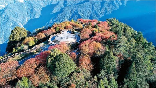 走上小笠原山觀景台,可感受360度環繞的無敵美景。(嘉義林區管理處提供)