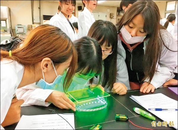 曾文農工學生以自製DNA電泳槽實驗分析。(記者楊金城攝)