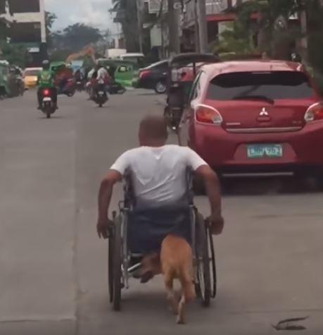 殘疾男子推著輪椅前進,愛犬則在後方用鼻頭、肩頸頂著車體,為主人分擔勞力。(擷取自YouTube)
