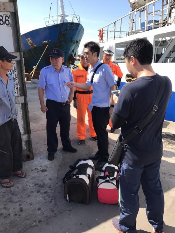 海巡署金門查緝隊等單位,對貨船船員涉嫌藏匿活體貓進行了解。(海巡署第十二巡防區提供)