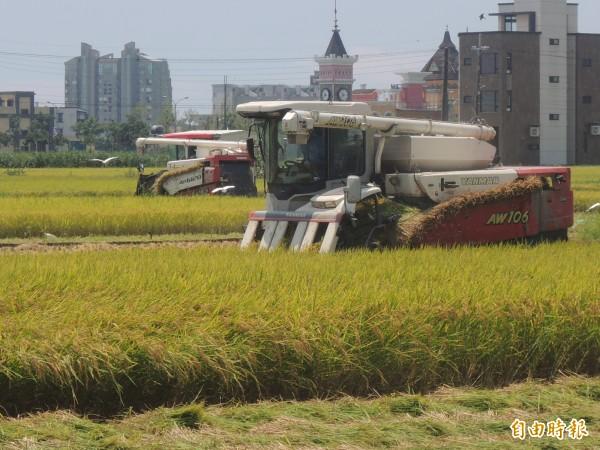 國土計畫審查黑箱? 內政部:不會有農地變更流失。(資料照)
