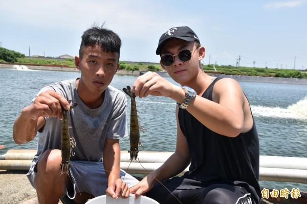 23歲李子宇(右)與同學黃育哲以生態養殖方法養草蝦,不用飼料,但育成率高且草蝦又大又壯。(記者黃淑莉攝)
