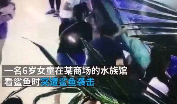 女童和家人到水族館看鯊魚,卻被鯊魚攻擊。(圖擷取自澎湃新聞)