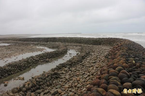 苗栗縣後龍鎮外海的合歡石滬是本島僅存的石滬之一。(記者鄭名翔攝)