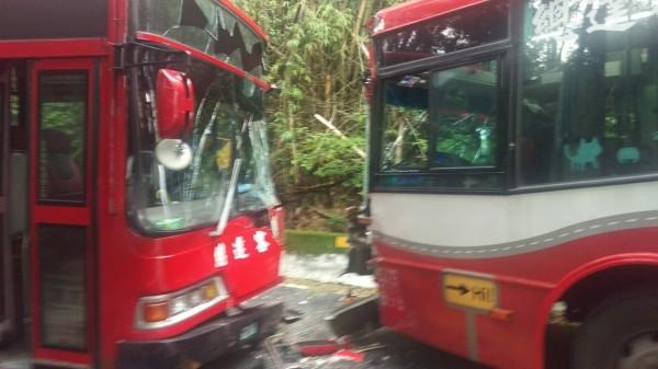 集集綠色隧道驚傳公車對撞,而且兩輛巴士還隸屬同一家客運公司。(記者劉濱銓翻攝)