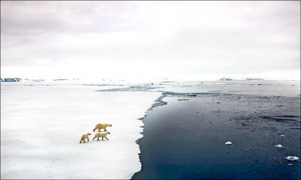 多國專家最新研究指出,地球資源恐如骨牌效應接連崩盤,成為不再適合居住的「熱室」。(取自網路)