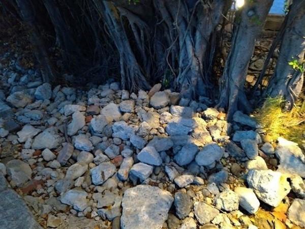 淡水海關碼頭園區環境改造工程上個月完工,但卻有民眾發現疑似工程所產生的廢棄建材、水泥塊等被回填到花圃中。(記者陳心瑜翻攝)