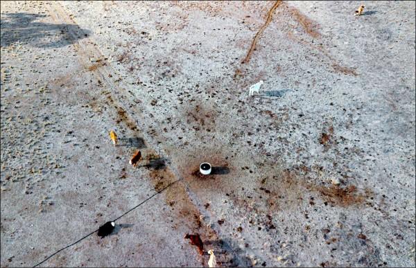 澳洲新南威爾斯州奎林蒂(Quirindi)七日空拍的旱象,乾枯的牧場上僅有少數牛隻。(法新社)