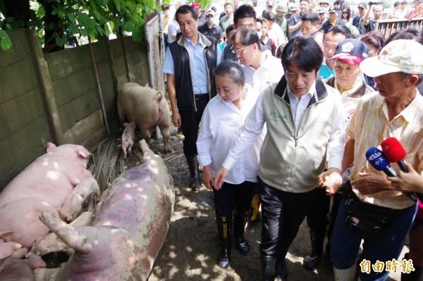 行政院長賴清德前往朴子市的養豬場勘災。(記者曾迺強攝)