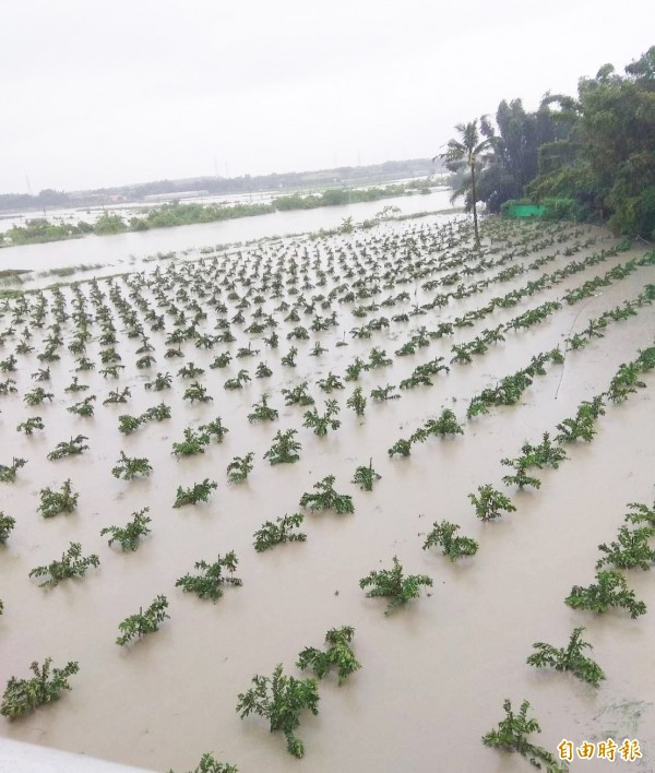 審計部最新報告指出,易淹水地區保護面積已增加,治理成效雖已達目標值,但地層下陷面積及速度擴大。(資料照)