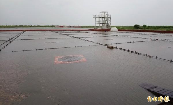 井仔腳100座鹽堆又因積水再次泡湯消溶,直到今天積水才消退。(記者楊金城攝)