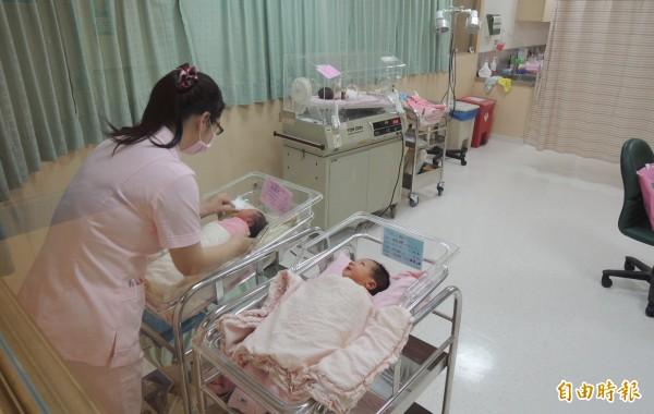 屏東市公所祭出生育補助,仍無阻擋人口減少的趨勢。(記者李立法攝)
