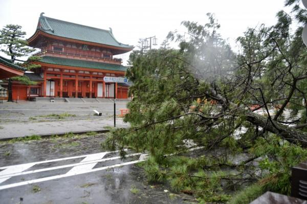 平安神宮前有倒塌路樹。(路透)