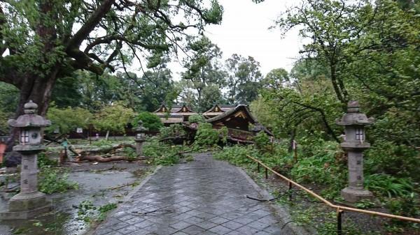 平野神社整個倒塌。(圖擷取自平野神社官方《推特》)