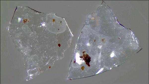 最新研究指出,隱形眼鏡流入污水處理廠後,會被微生物分解成塑膠微粒,對環境造成危害。(取自網路)