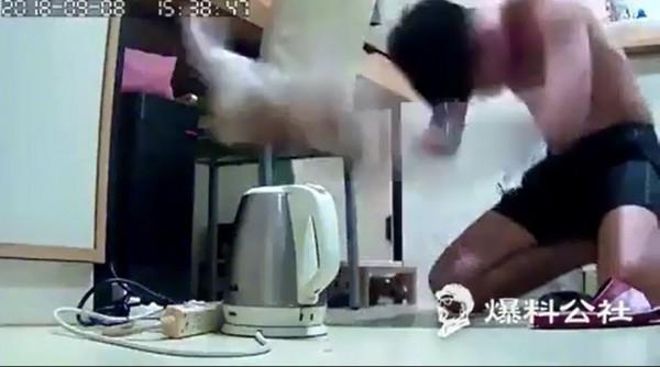 男抓貓朝地板猛摔。(擷取自爆料公社)