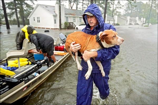 北卡志工十四日協助紐伯恩市災民與其寵物撤離家園。(法新社)