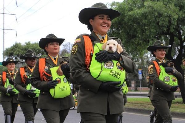 軍方為了保護小狗,還將狗狗們裝在特製的加溫袋中。(圖擷自推特)