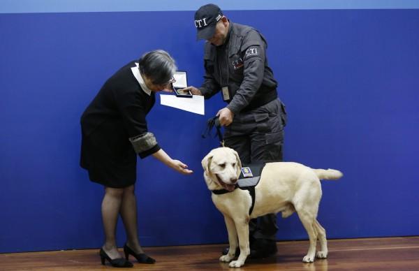 正在接受頒獎儀式的警犬及馴犬員。(美聯社)