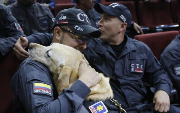 警犬與馴犬員經歷同甘共苦,關係相當親密。(美聯社)