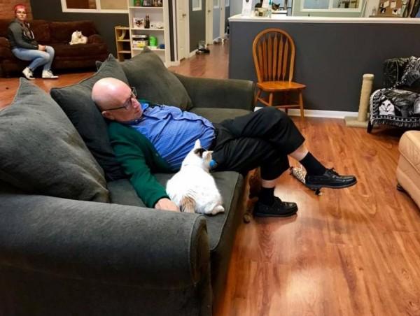 羅倫和貓咪一起休息的照片,讓1美元、2美元、5美元的小額捐款一直湧入收容所帳戶。(圖擷自Safe Haven Pet Sanctuary Inc.臉書)