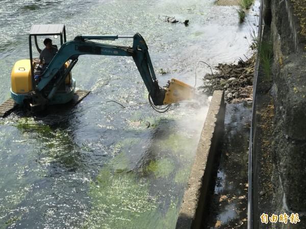 烏日麻園頭溪舊溝渠會困住魚群,在市議員陳世凱的協調下,市府水利局已將溝渠拆除。(記者蘇金鳳攝)