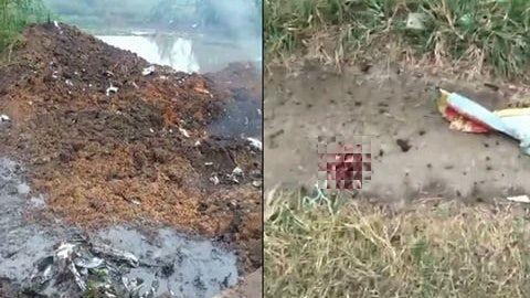 網路瘋傳一段影片,墜機現場留有一片帶有解放軍「八一」軍徽的軍機殘骸,其中還有一塊帶有血跡的、疑似屍塊的物體。(圖擷取自微博)