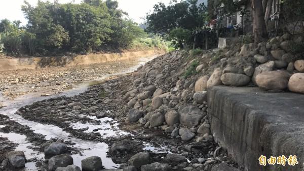 關西鎮公所主祕吳祥光說,大的溪石,他們集中堆置在關西橋下游充當護岸,並沒有外運或標售。(記者黃美珠攝)