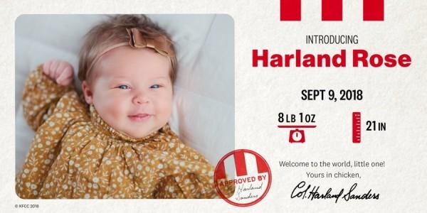 美國肯德基給了一對夫妻1.1萬美金,請他們將新生兒的名字改成跟肯德基爺爺一樣的哈蘭。(圖擷自推特)