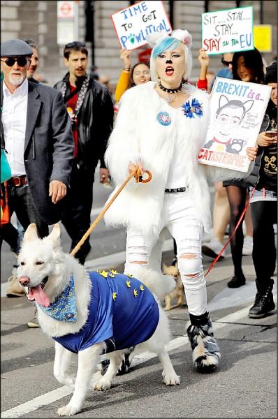 主張透過第二次公民投票留在歐洲聯盟的英國民眾,上月七日齊力帶愛犬上街遊行反脫歐。(法新社)