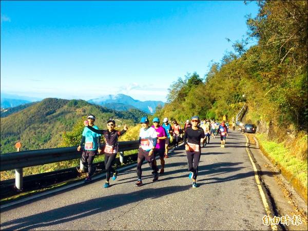 合歡山馬拉松昨晨登場,全程幾乎都在海拔2000公尺以上進行,是高難度路跑活動。(記者佟振國攝)
