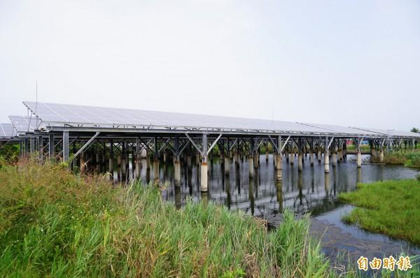 林邊光采濕地,曾獲APEC能源智慧社區智慧電網類銀質獎殊榮。(記者陳彥廷攝)