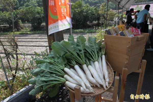 美濃特產白玉蘿蔔。(資料照)