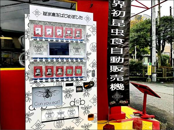 日本熊本市區出現標榜「世界首台」的昆蟲自動販賣機,販售包括蟋蟀、蚱蜢、黃粉蟲、螻蛄、田鱉、龍蝨等陸生或水生昆蟲製成的十種零食,引發話題。(取自網路)
