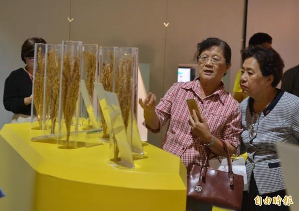 科工館舉辦「米特產」,呈現各國米食文化。(記者黃佳琳攝)