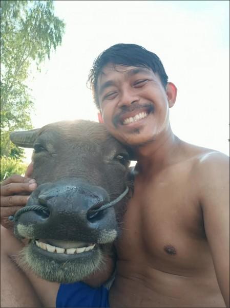 蘇拉特.帕伊卡特與他鍾愛的水牛通堪。(摘自網站)