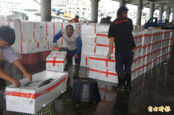 滿滿的裝土〈加魚字旁〉魠保麗龍箱,準備送往台灣饕客手中。(記者劉禹慶攝)